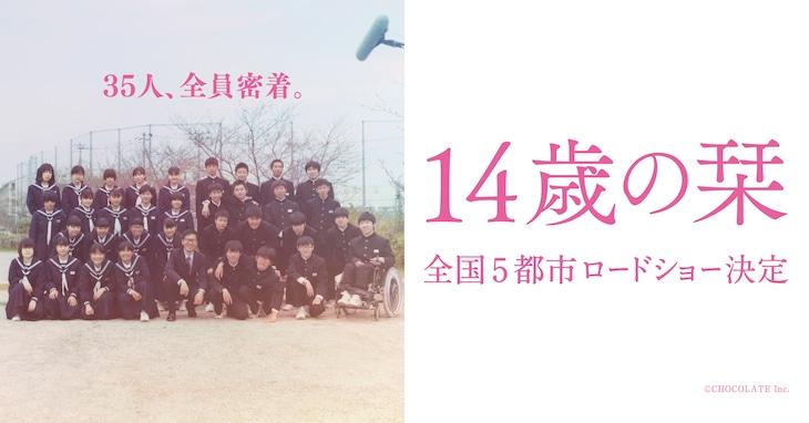 「14歳の栞」ビジュアル