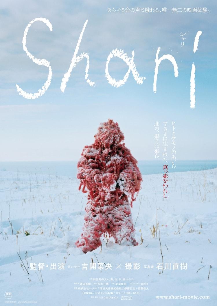 「Shari」ポスタービジュアル