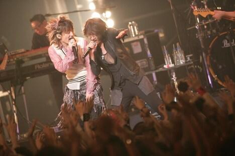 ライブ中何度も「糸電話で話せる距離にいた」と2人の関係を例えていたKenとTETSUYA。ひさびさに同じステージに立った2人は、非常にリラックスした表情を見せていた(photo by 三吉ツカサ)。