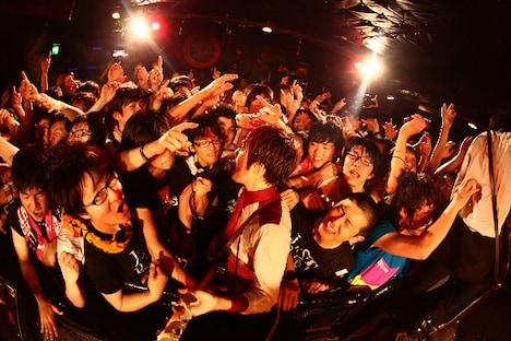 本日の下北沢SHELTER公演(写真)のライブレポートは、後日ナタリーに掲載予定。