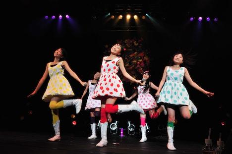 ももいろクローバーZ(写真はZepp Tokyo公演第1部の様子)