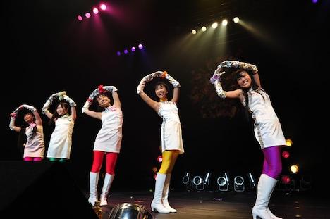 写真はZepp Tokyoで行われた未確認少女隊UFIのライブの模様。