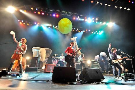 写真は3月23日に行われたBIGMAMAのTOKYO DOME CITY HALL公演の様子。