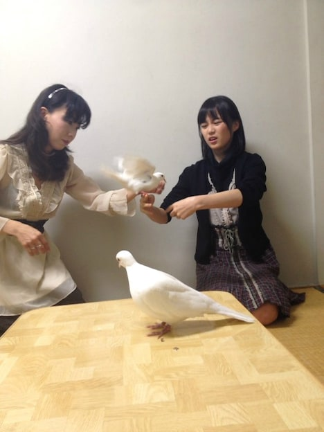 「制服のマネキン」初回限定盤DVDより、苦手な鳥の克服に挑む生田絵梨花。