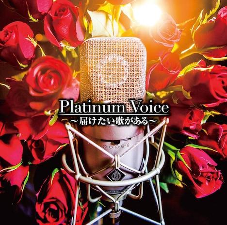 V.A.「Platinum Voice~届けたい歌がある~」ジャケット