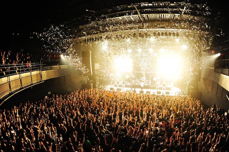 """東京・SHIBUYA-AXで行われた「SKA SKA CLUB LIVE """"NEW HOPE""""」の模様。"""