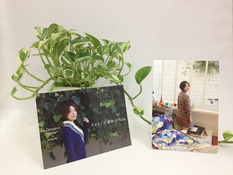 立てて飾ることができる特製コレクションスタンドカード。