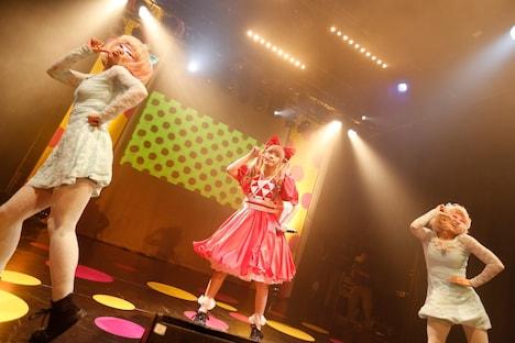「100%KPP WORLD TOUR 2013」ベルギー公演の模様。(撮影:石井亜希)