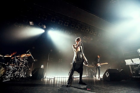 「acid android live 2013」の様子。(撮影:岡田貴之)