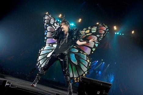 蝶になったDAIGO。(撮影:緒車寿一、田中和子)
