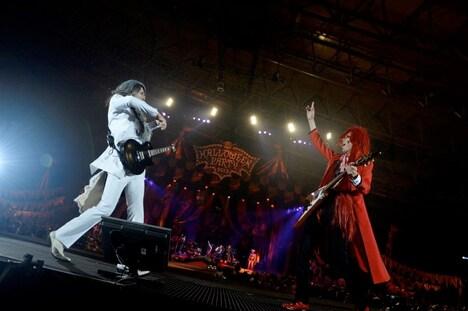 向かい合わせでギターを鳴らすTAKUROとShinji。(撮影:緒車寿一、田中和子)