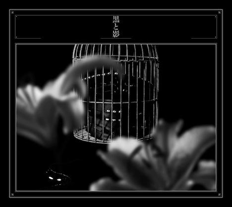 黒夢「黒と影」初回限定盤ジャケット