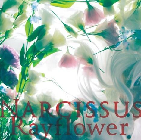 Rayflower「Narcissus」ジャケット