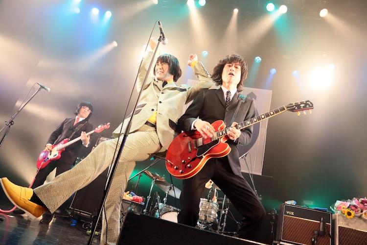 THE COLLECTORS(撮影:柴田恵理)