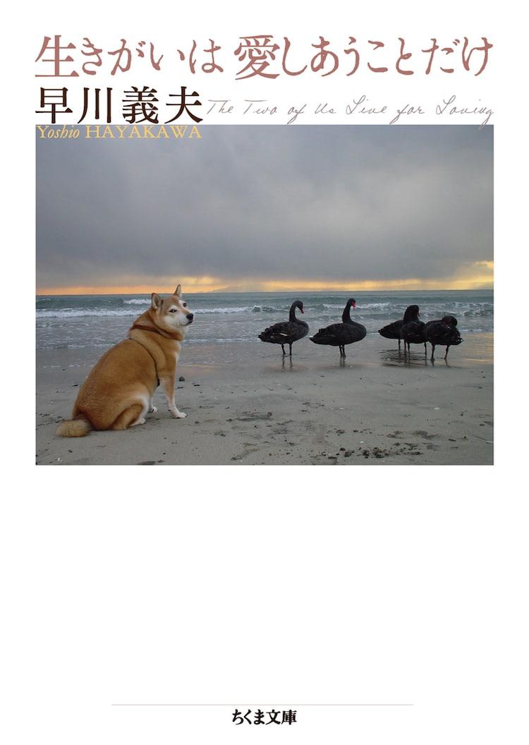 早川義夫「生きがいは愛しあうことだけ」書影