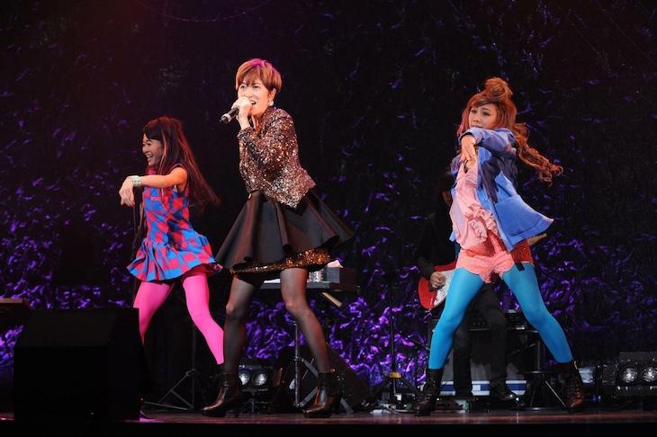 荻野目洋子「荻野目洋子 30th Aniniversary LIVE『ディア・ポップシンガー』」東京・赤坂BLITZ公演の様子