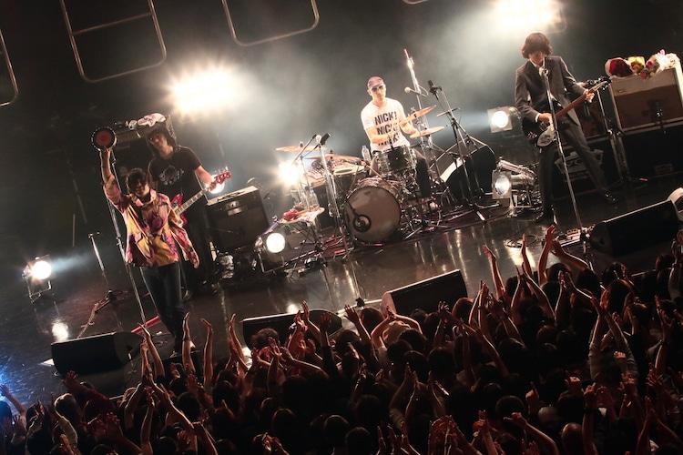 "THE COLLECTORS「THE COLLECTORS TOUR 2014 ""DA! DA!! DA!!!""」東京・Zepp DiverCity TOKYO公演の様子。(撮影:柴田恵理)"