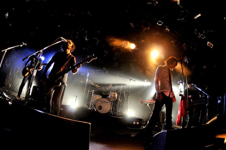 「つばき『真夜中の僕、フクロウと嘘』発売記念ツアー~夜行性の三羽の夢と嘘~」東京・渋谷CLUB QUATTRO公演の様子。(撮影:小川舞)