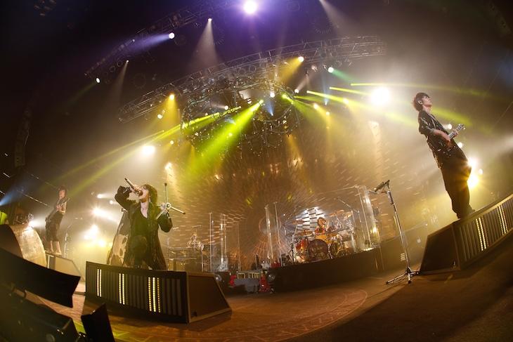 VAMPS「VAMPS LIVE 2014-2015」1月25日の東京・Zepp Tokyo公演の様子。(撮影:田中和子)