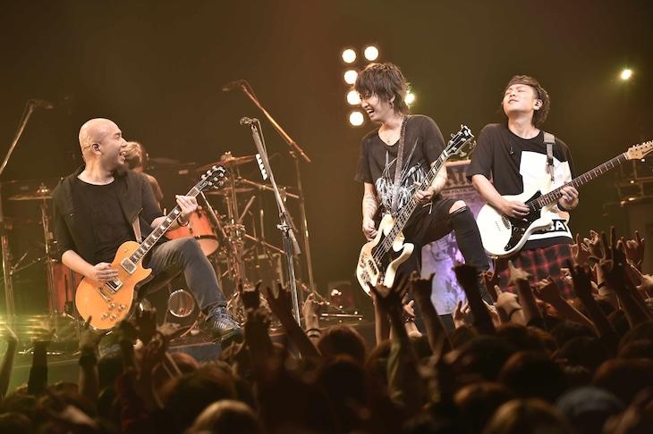 "AKi「AKi 1st Solo LIVE ""A Feeling Begins to Arise""」の模様。(撮影:江隈麗志)"