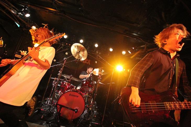 "FOUR GET ME A NOTS「""BLINKS 5"" -Follow your tracks-」の様子。(Photo by SARU[SARUYA AYUMI])"
