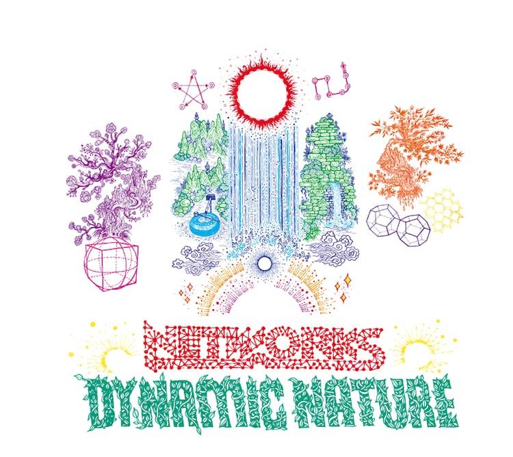 NETWORKS「DYNAMIC NATURE」ジャケット