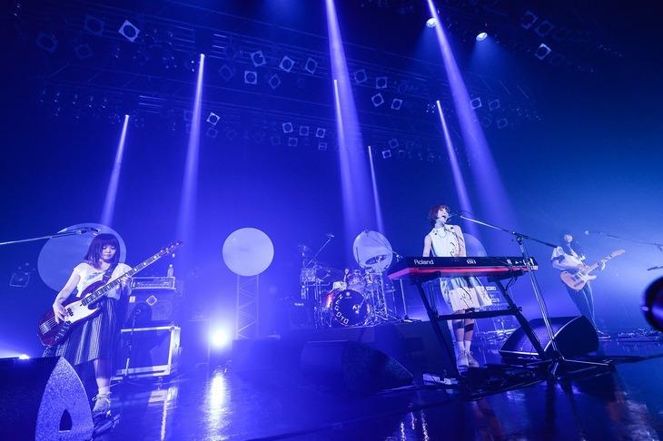 ねごと「ねごと presents『お口ポカーン?! 初の全国ワンマンツアー2015 ~VISIONは続くよどこまでも♪~』」東京・Zepp DiverCity TOKYO公演の様子。(Photo by AZUSA TAKADA)
