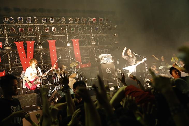 HAWAIIAN6(Photo by Tetsuya Yamakawa[showcase])