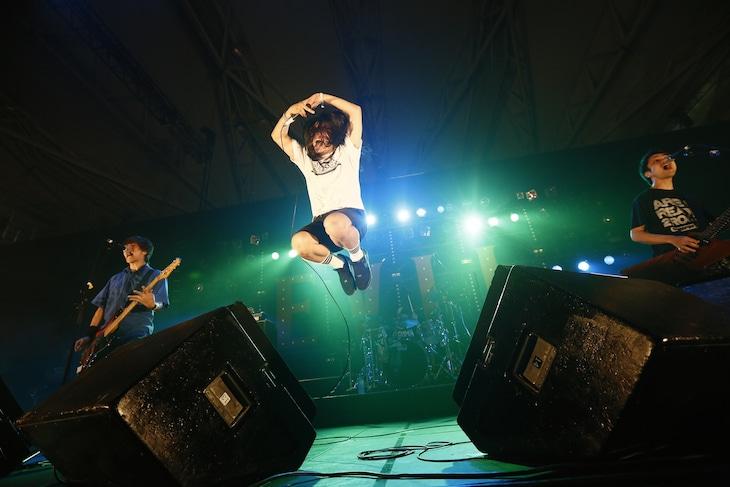 SHIMA(Photo by tetsuya yamakawa[showcase])