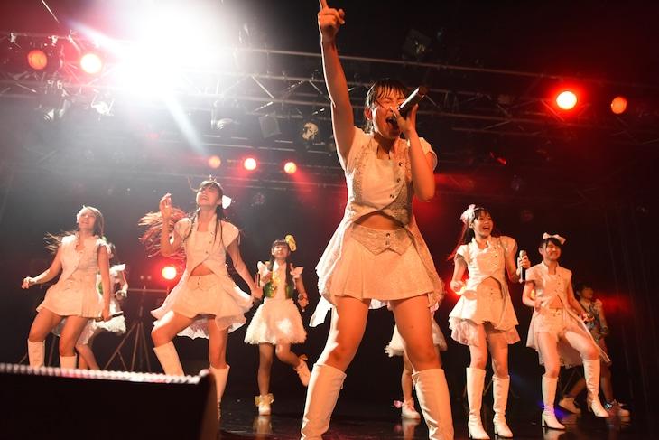 乙女新党、東京パフォーマンスドールによるコラボライブの様子。