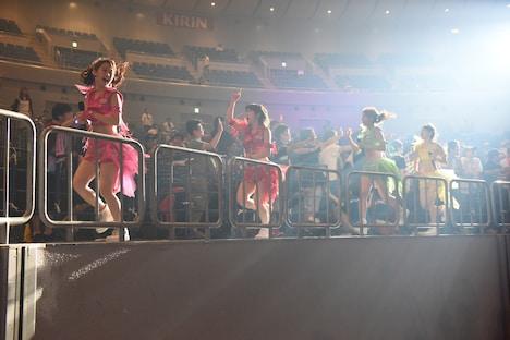 横浜アリーナのスタンド席を走るアップアップガールズ(仮)。