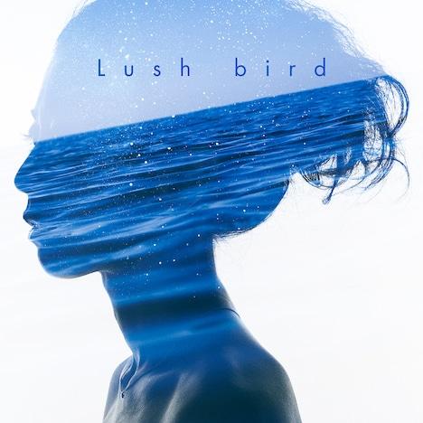 bird「Lush」ジャケット