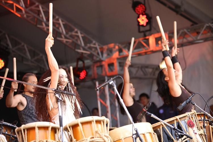 GOCOO+GoRo (撮影:船橋岳大)