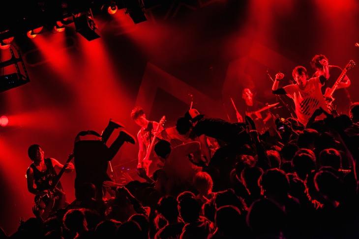 "Crystal Lake「THE SIGN TOUR」東京・LIQUIDROOM公演の様子。(Photo by Takashi ""TAKA"" Konuma)"