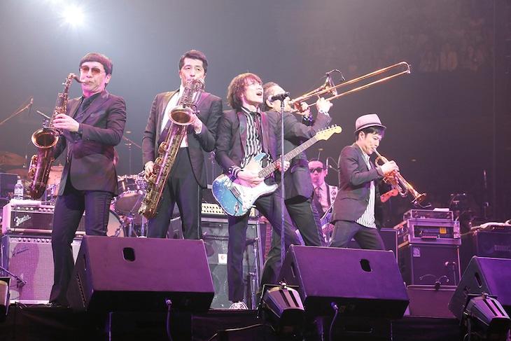 「Live at Budokan ~The Last~」の様子。(写真提供:エイベックス・ミュージック・クリエイティヴ)