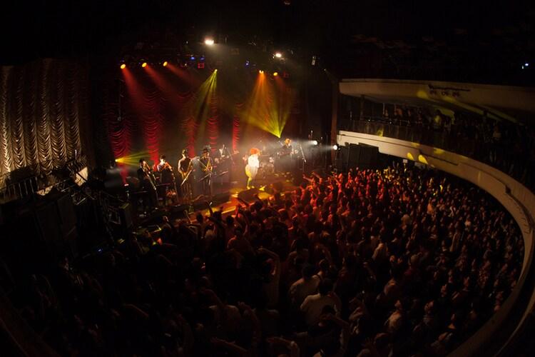 「EGO-WRAPPIN' live Midnight Dejavu」東京公演の様子。(撮影:仁礼博)
