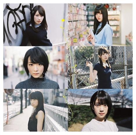 乃木坂46「ハルジオンが咲く頃」Type-Cジャケット