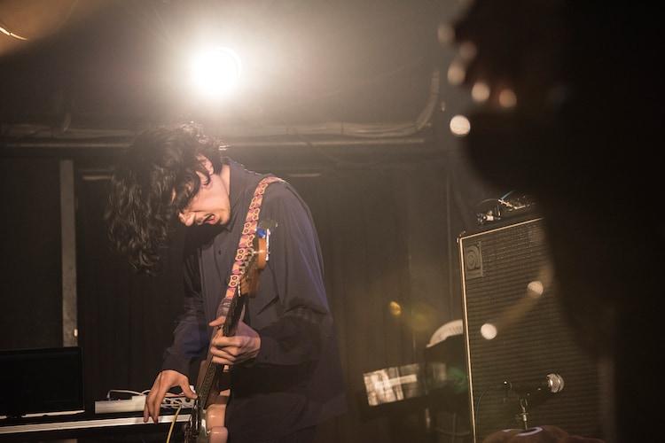 安西卓丸(B, Vo / ふくろうず)(Photo by Daisuke Miyashita)
