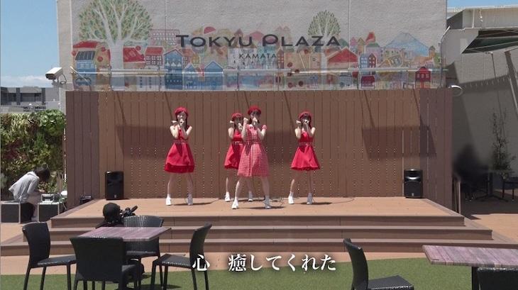 さゆりんご軍団「さゆりんごが咲く頃」ライブ映像のワンシーン。