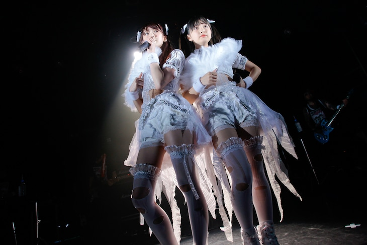 The Idol Formerly Known As LADYBABY(撮影:ペータ)