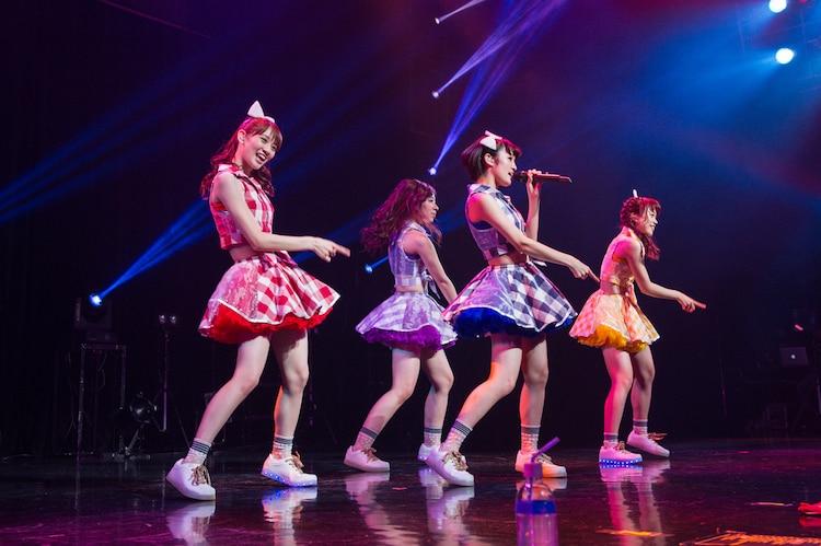 「LIVE HOUSE TOUR 2016 ~紅葉しに行こうYO!行脚だぎゃぁ~」大阪・なんばHatch公演の様子。