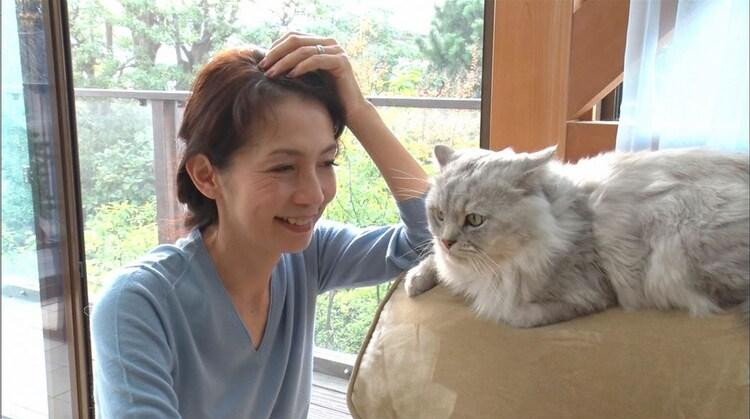元TBSアナウンサー渡辺真理。 (c)日本テレビ