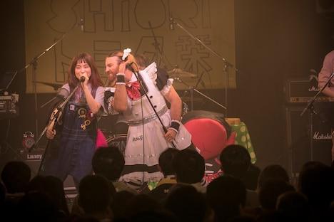 左からトミタ栞、レディビアード。(写真提供:EPICレコードジャパン)