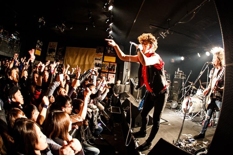 SA(Photo by chiyori)
