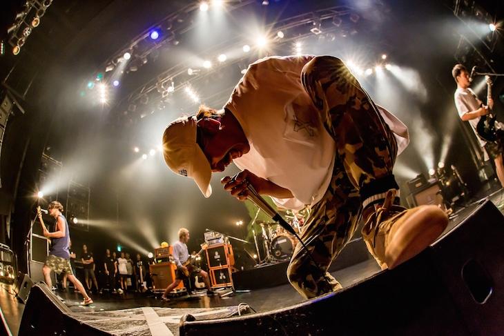 SHADOWS「OPERATION ATTIC TOUR」東京・TSUTAYA O-EAST公演の様子。(Photo by TAKASHI KONUMA)