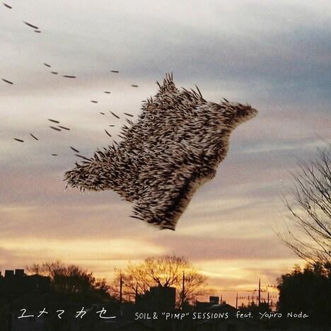 "SOIL&""PIMP""SESSIONS feat. Yojiro Noda「ユメマカセ EP」配信ジャケット"