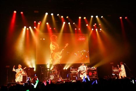 DISH//のライブの様子。(写真提供:Sony Music Records)