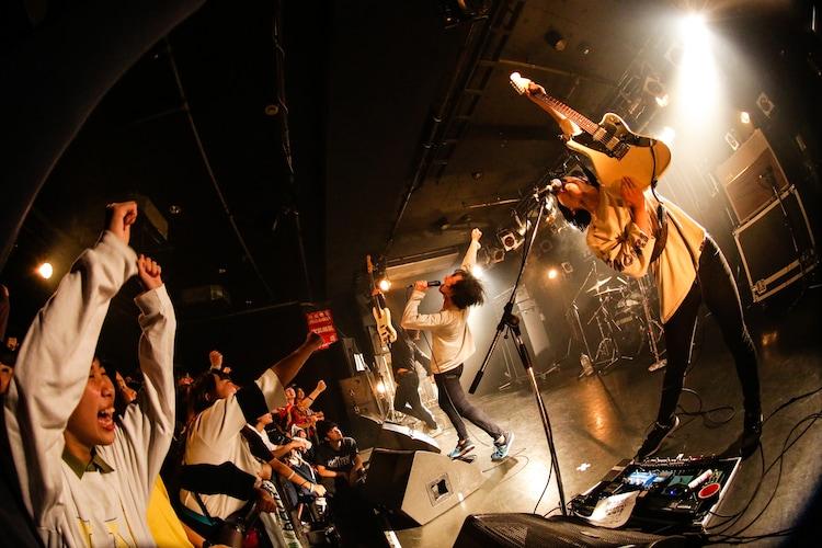 ハルカミライ(Photo by Shiraishi Tatsuya)