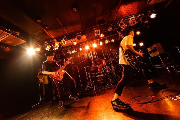 知る権利(Photo by Shiraishi Tatsuya)