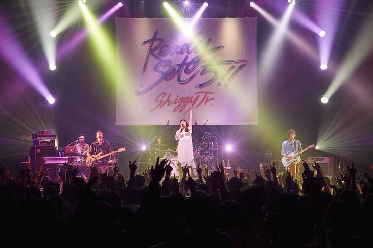 Shiggy Jr.「Shiggy Jr. LIVE TOUR 2017 -Ready Set 5!!-」東京・赤坂BLITZ公演の様子。(撮影:田中聖太郎写真事務所)
